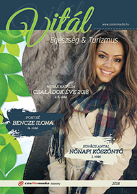 Zala megye  magazin